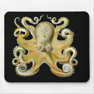 Common Octopus Mouse Mat