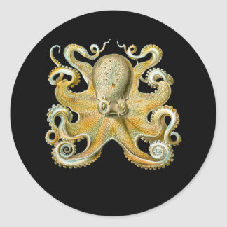 Common Octopus Round Sticker