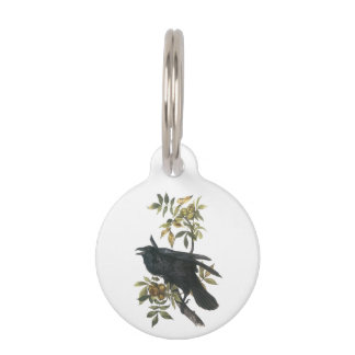Common Raven by Audubon Pet Nametag