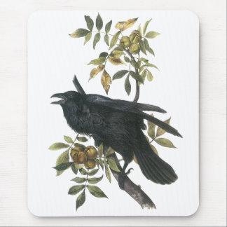 Common Raven, John audubon Mouse Mat