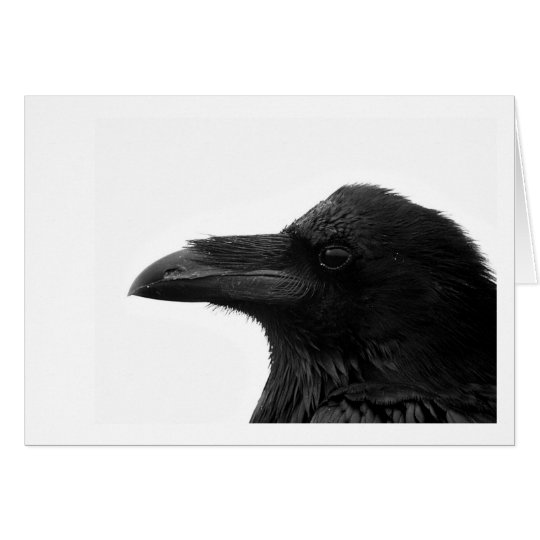 Common Raven Notecard