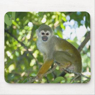 Common Squirrel Monkey (Saimiri sciureus) Rio Mouse Mat