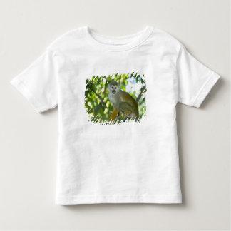 Common Squirrel Monkey (Saimiri sciureus) Rio Shirts