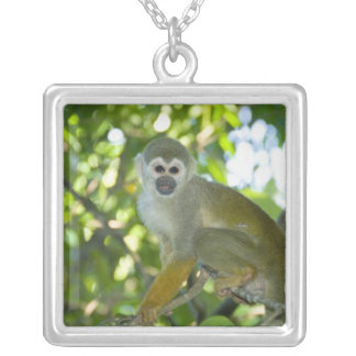 Common Squirrel Monkey (Saimiri sciureus) Rio Silver Plated Necklace