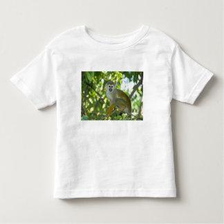 Common Squirrel Monkey (Saimiri sciureus) Rio Toddler T-Shirt