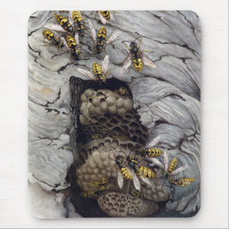 COMMON WASPS 2 MOUSE MAT