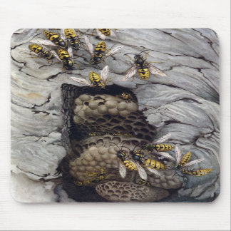 COMMON WASPS 2 MOUSE PADS