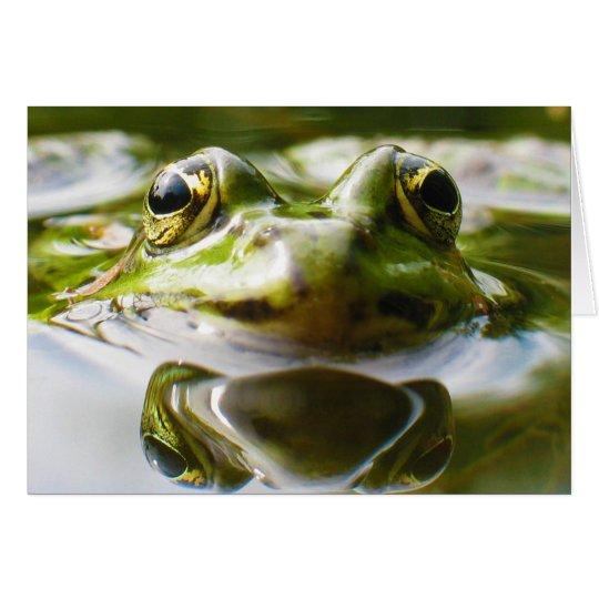 Common Water Frog Rana Esculenta Card