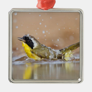 Common yellowthroat bathing christmas ornament