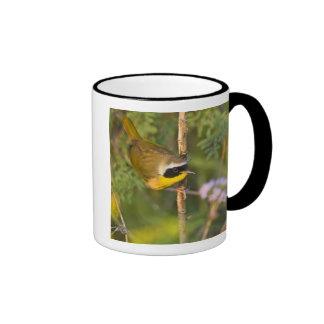 Common Yellowthroat Geothlypis trichas) male, Coffee Mug
