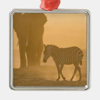 Common Zebra, Equus burchelli, and Elephant, Ornament