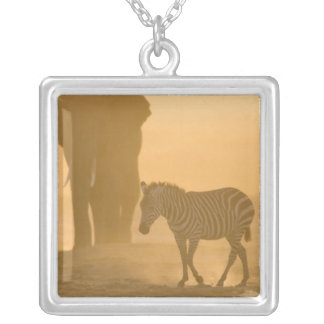 Common Zebra, Equus burchelli, and Elephant, Square Pendant Necklace