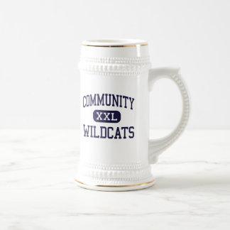 Community - Wildcats - High - West Chicago Beer Steins