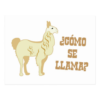 Como Se Llama?  What is your name? Postcard