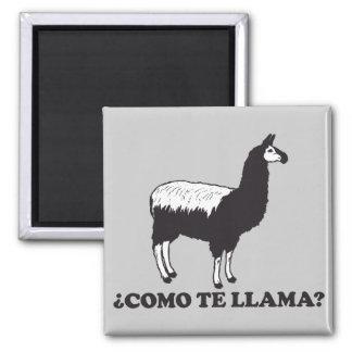 Como Te Llama Magnet
