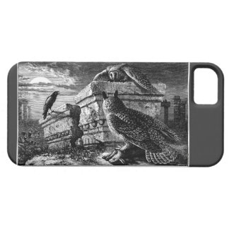 Companion to Owls iphone 5 5S case