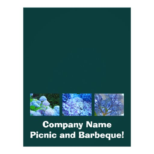 Company Picnic & Barbeque! Flyers Add Your Text