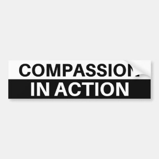 Compassion In Action - Bumper Sticker