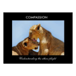 Compassion with orphaned cubs poster