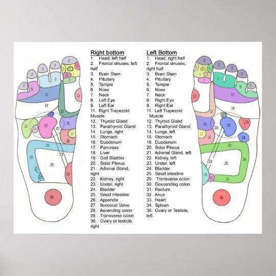 Complete foot Acupressure diagram Poster