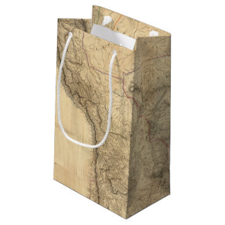 Composite South America 4 Small Gift Bag