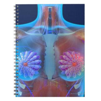 Computer artwork representing breast cancer, note books