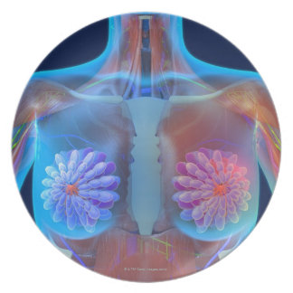 Computer artwork representing breast cancer, party plates