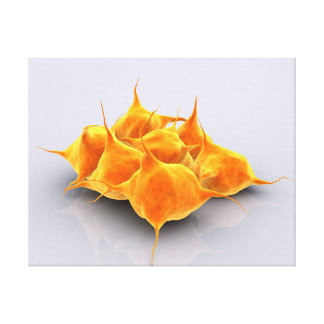 Conceptual Image Of A Group Of Platelets Gallery Wrap Canvas