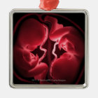 Conceptual image of a womb containing twins christmas ornament