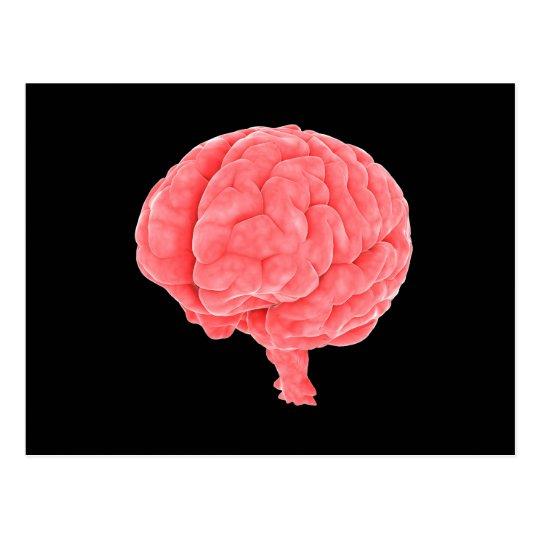Conceptual Image Of Human Brain 5 Postcard