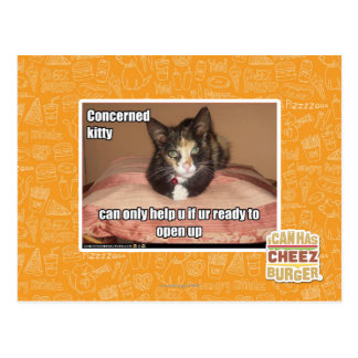 Concerned Kitty Postcard