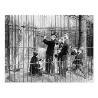 Concert For Polar Bears, 1925 Postcard