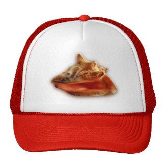 Conch Cap