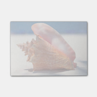 Conch Shell On Beach 2 Post-it® Notes