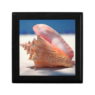Conch Shell On Beach 2 Small Square Gift Box