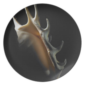 Conch shell plate