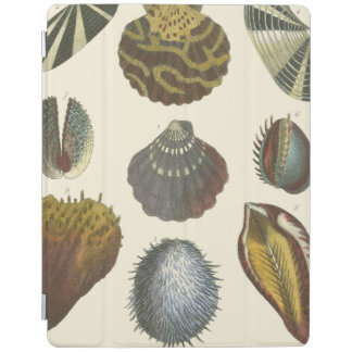 Conchology Collection iPad Cover