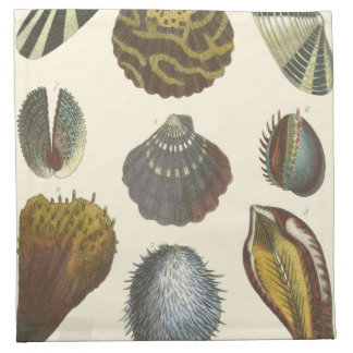 Conchology Collection Napkin