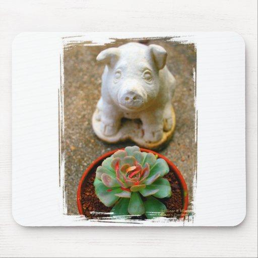 Concrete Sitting Pig with succulent plant Mouse Pad