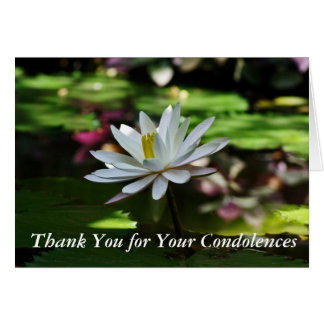 Condolence Thank You Cards - Waterlily