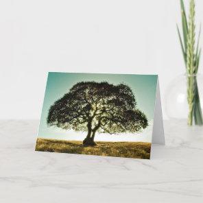 Condolences Card with Tree