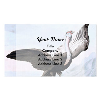 Condor Bird Wildlife Illustration Pack Of Standard Business Cards