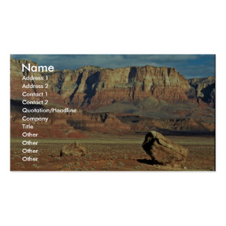 Condor Release Pack Of Standard Business Cards