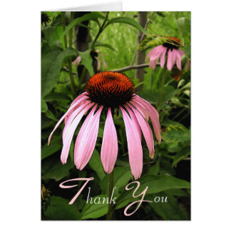 Cone Flower Thank You Note Card
