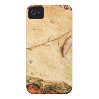 CONE ON STONE AMONG LEAVES iPhone 4 Case-Mate CASES