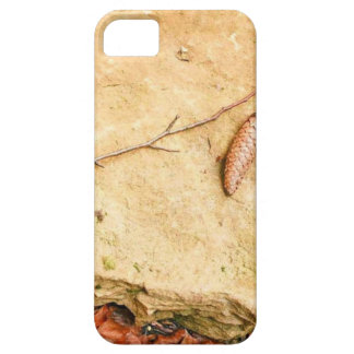 CONE ON STONE AMONG LEAVES iPhone 5 COVERS