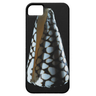 Cone shell 2 iPhone 5 case