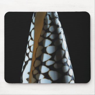 Cone shell 2 mouse mat