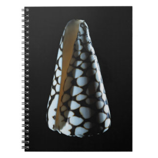 Cone shell 2 notebook
