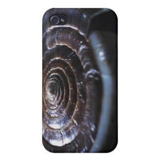 Cone shell iPhone 4 cover